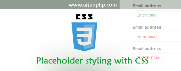 Placeholder styling with css